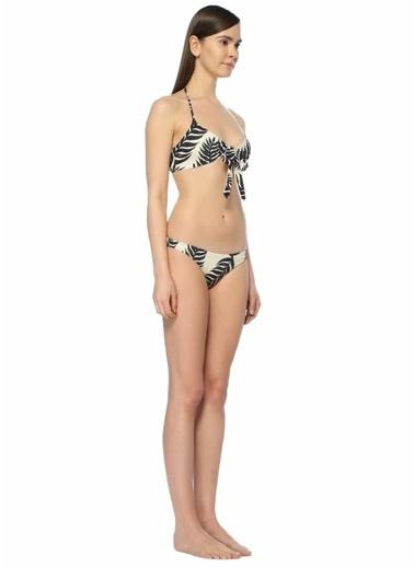 Patbo Bikini Alt Renkli